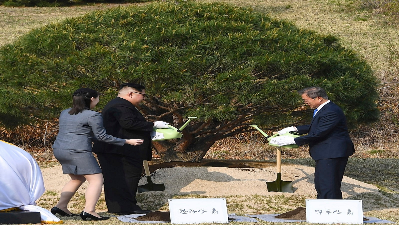 For North Korean leader Kim Jong Un, who is pictured planting a pine tree near the military demarcation line the summit is very crucial. With global pressure mounting along with trade embargo the leader has to come up with a solution that ensures both security and prosperity of his country. South Korea too will want to ease tensions with its poor but trigger happy neighbor. (Korea Summit Press Pool via AP)