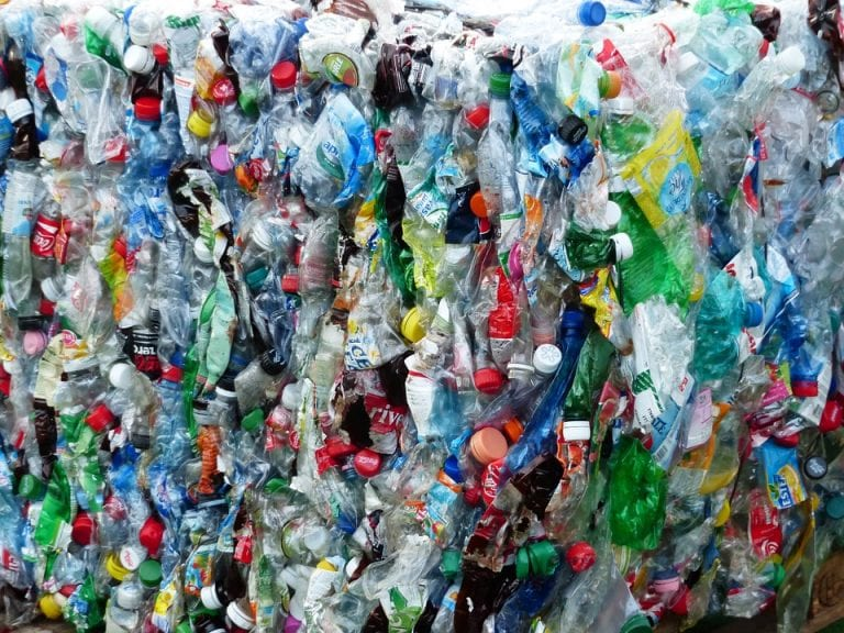 Enzyme that breaks down plastic bottles developed by accident