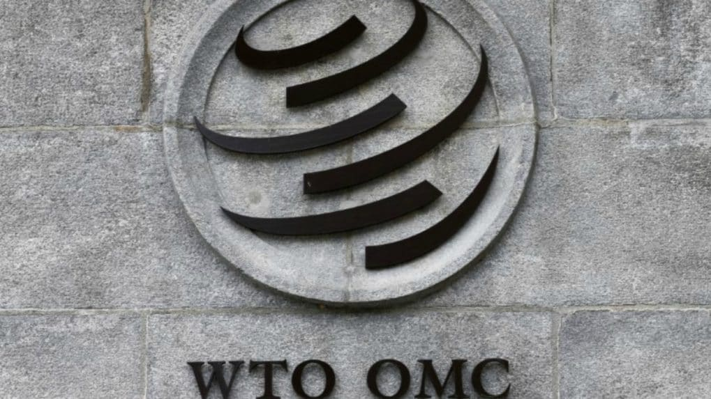 Trade restrictions among G20 at historic heights, says WTO