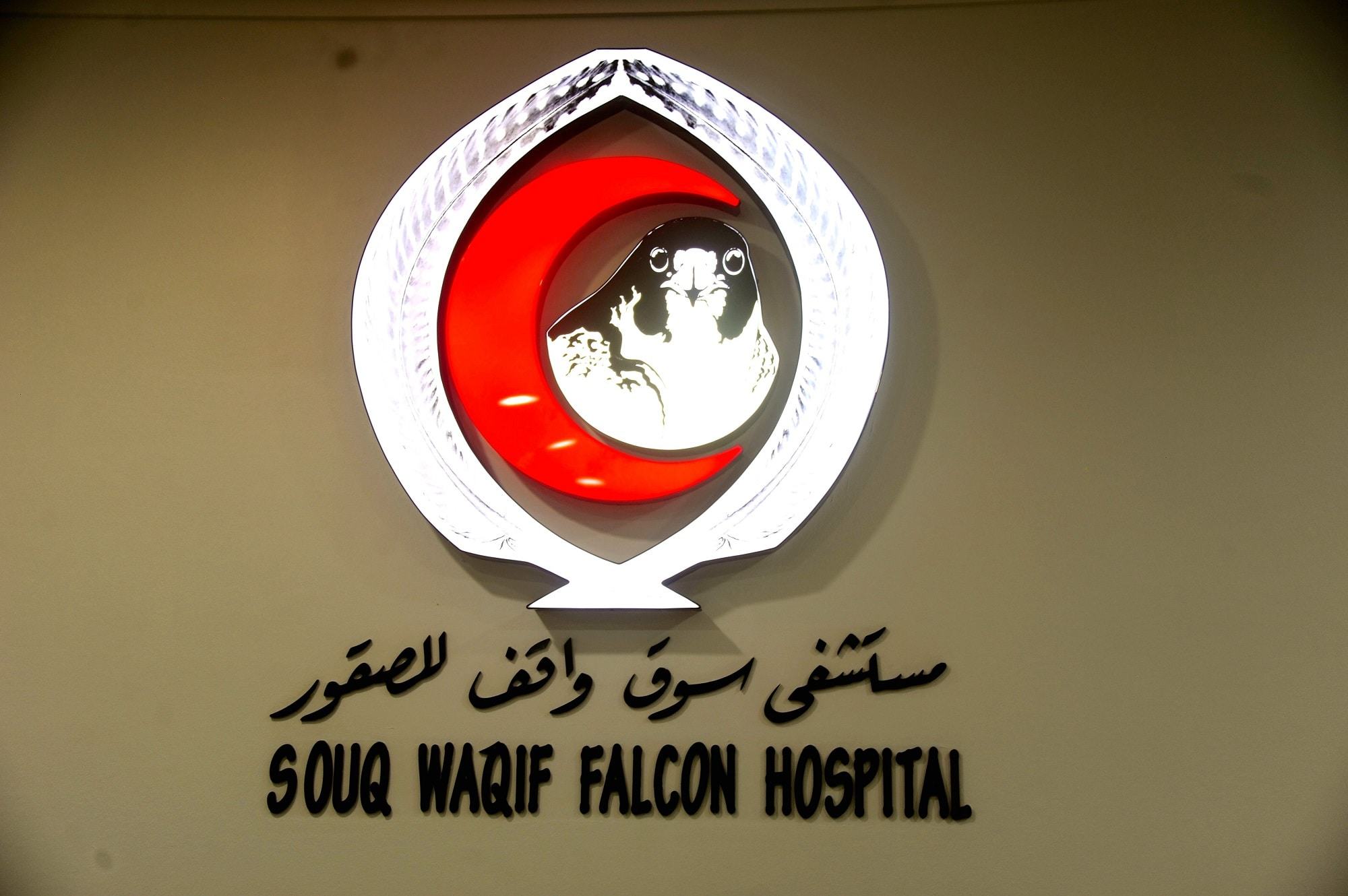 A man and his falcon at the Souq Waqif Falcon Hospital