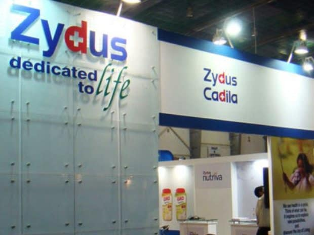 <strong>Cadila Healthcare</strong>'s shares fell 2.5 percent to hit its 52-week low of Rs 223.15 per share.