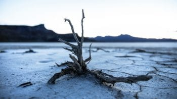Here is what experts have to say on recent report by IPCC on climate change