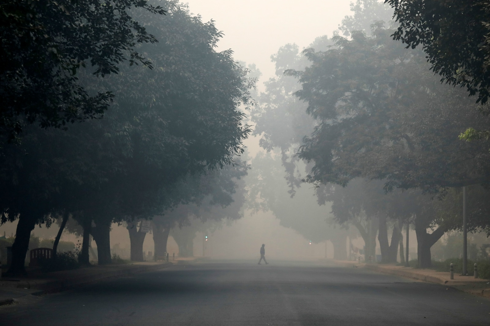 A man crosses a road on a smoggy morning in New Delhi, India, November 8, 2018. REUTERS/Anushree Fadnavis