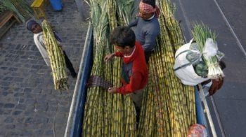 Indian mills contract to export 27 lakh tonnes of sugar, says trade body