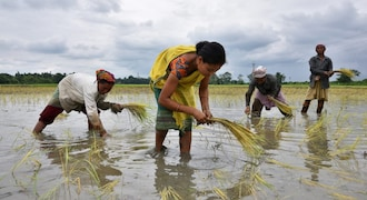 Natural calamities force private insurers to exit from insuring crops, says report