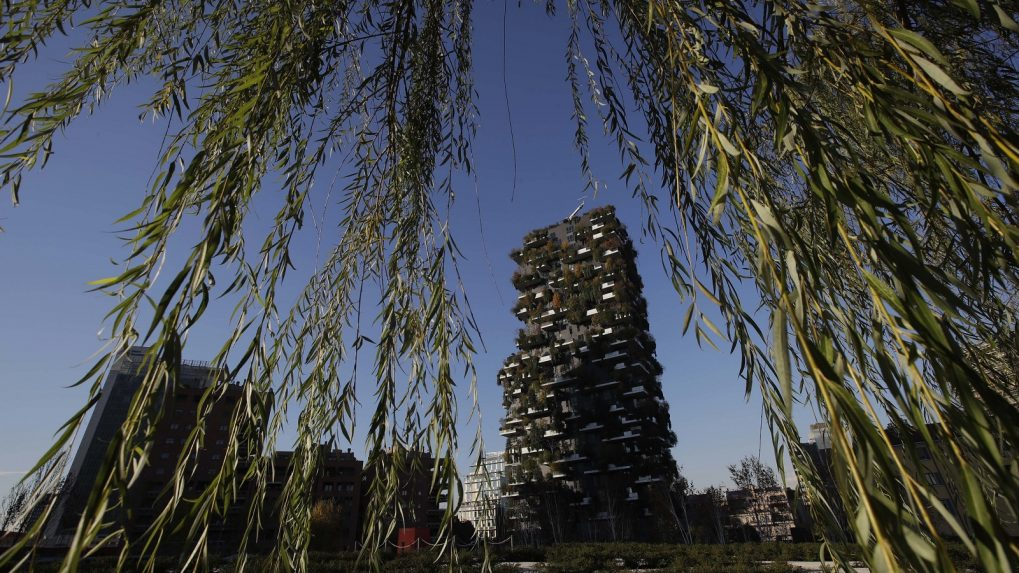 Plant a tree: Milan's ambitious plans to be cleaner and greener