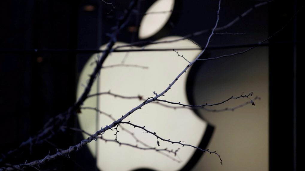 Government nudges Apple Inc to increase Indian operations' scope