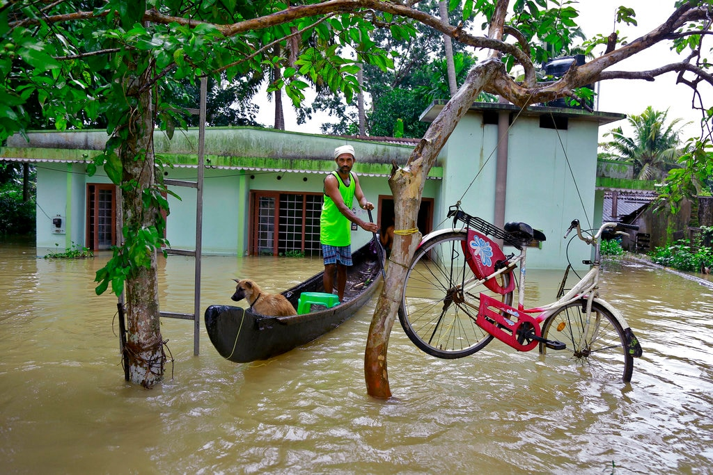 In this Monday, August 20, 2018 file photo, a bicycle is hung from a tree branch to avoid being washed away in flood waters as a man rows past with his dog in a boat at Kuttanad in Alappuzha in the state of Kerala, India. Kerala was battered by torrential downpours starting August 8, with floods and landslides killing hundreds. About 800,000 people found shelter in 4,000 relief camps. (AP Photo/Tibin Augustine)