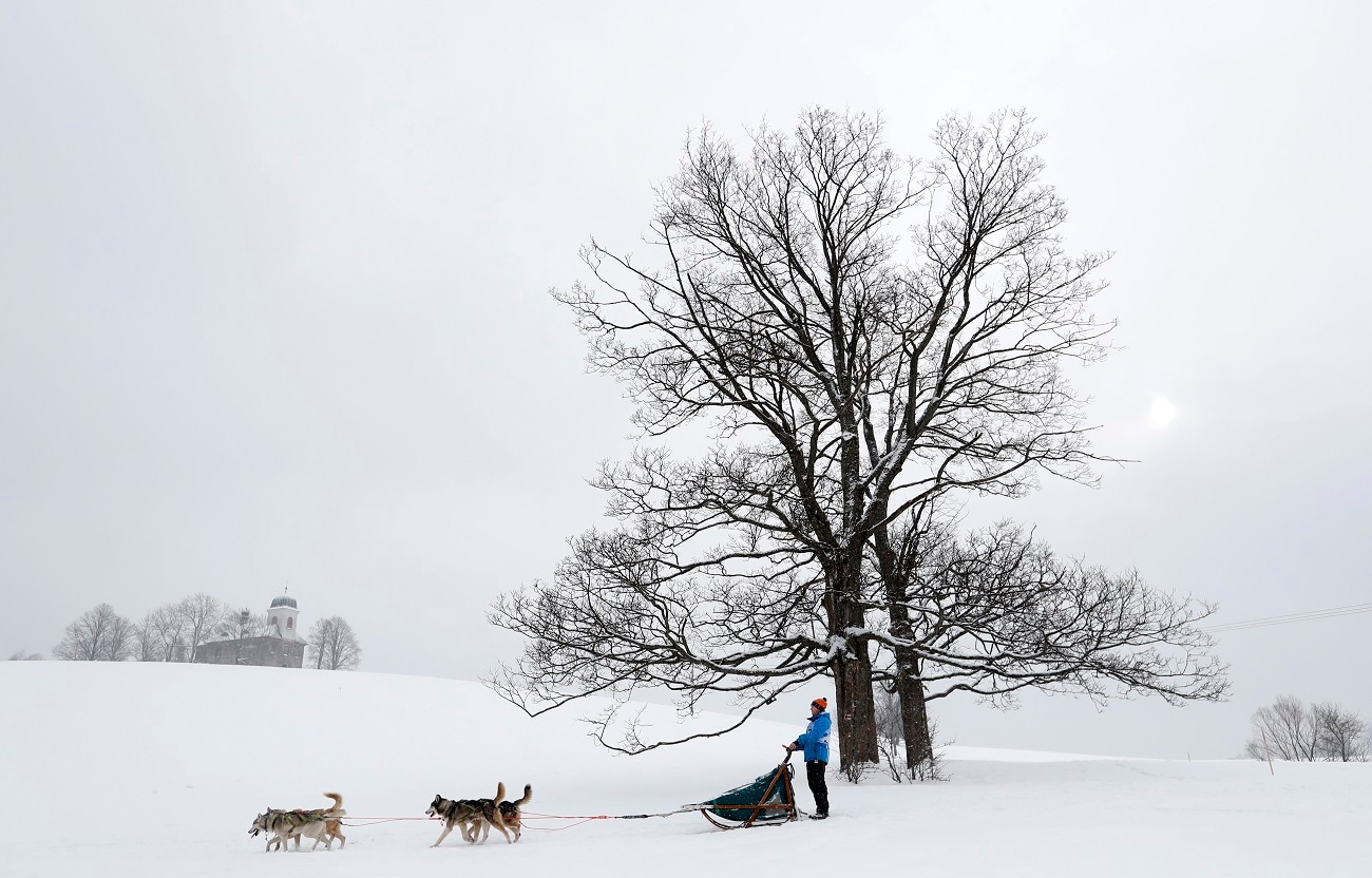 A musher and his dogs during the Sedivackuv Long dog sled race near the village of Destne v Orlicky Horach. (AP Photo/Petr David Josek)