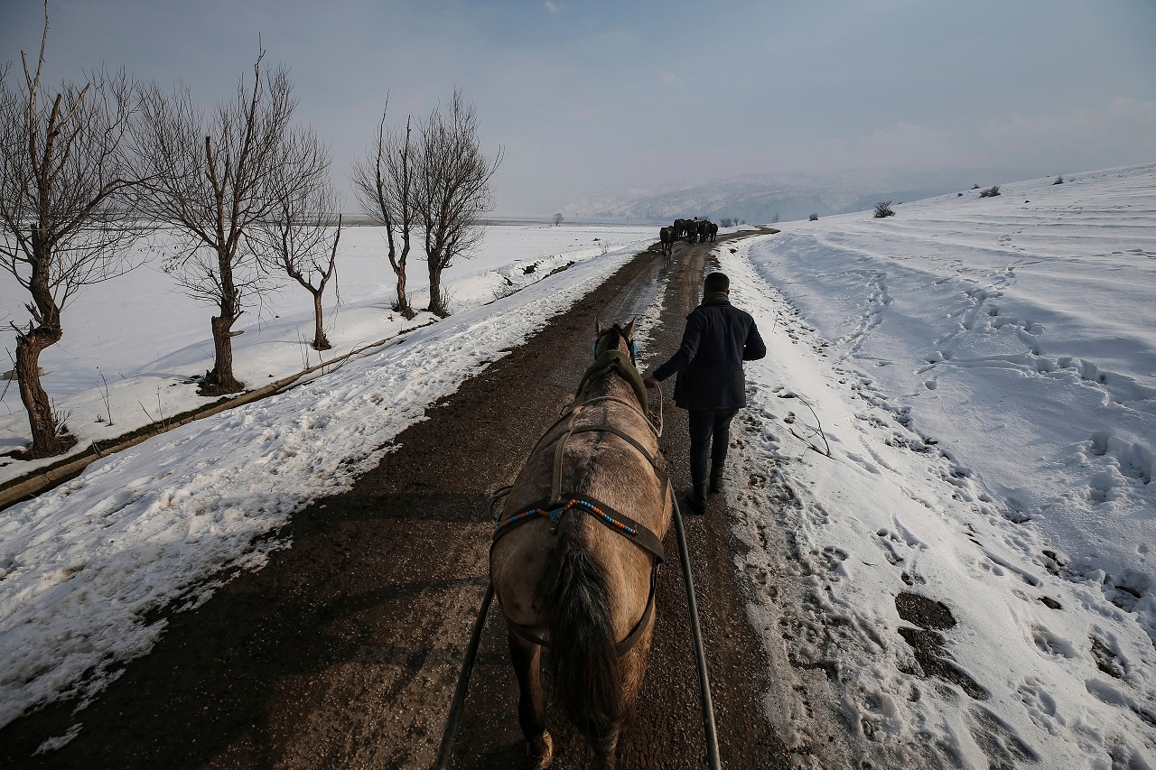 Berkan Toren, 20, returns to his village of Budakli, in the mountainous Bitlis province of southeastern Turkey, after walking his water buffaloes to a bath in a nearby hot spring. (AP Photo/Emrah Gurel)