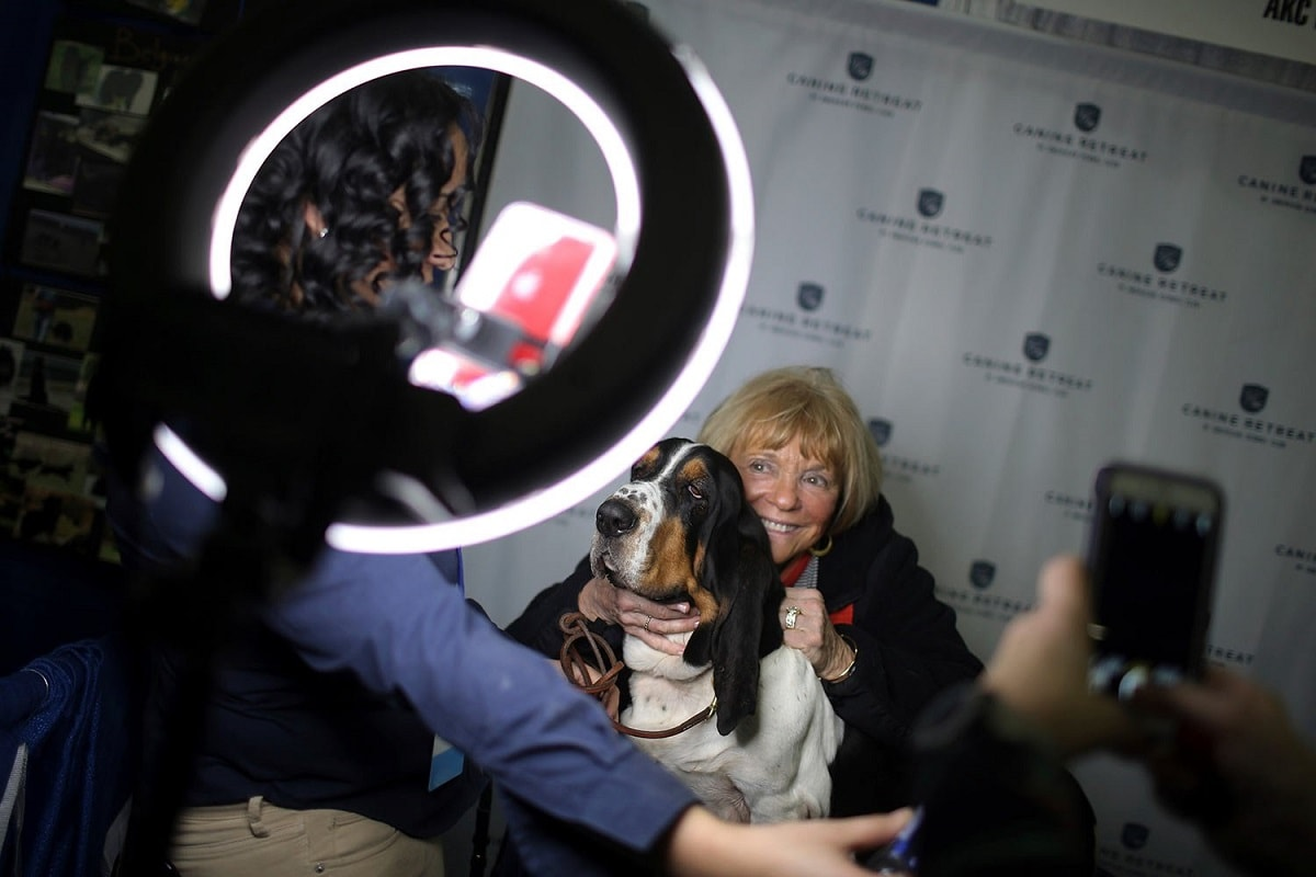 A woman poses with a basset hound during the meet the breeds companion event to the Westminster Kennel Club Dog Show. (AP Photo/Wong Maye-E)