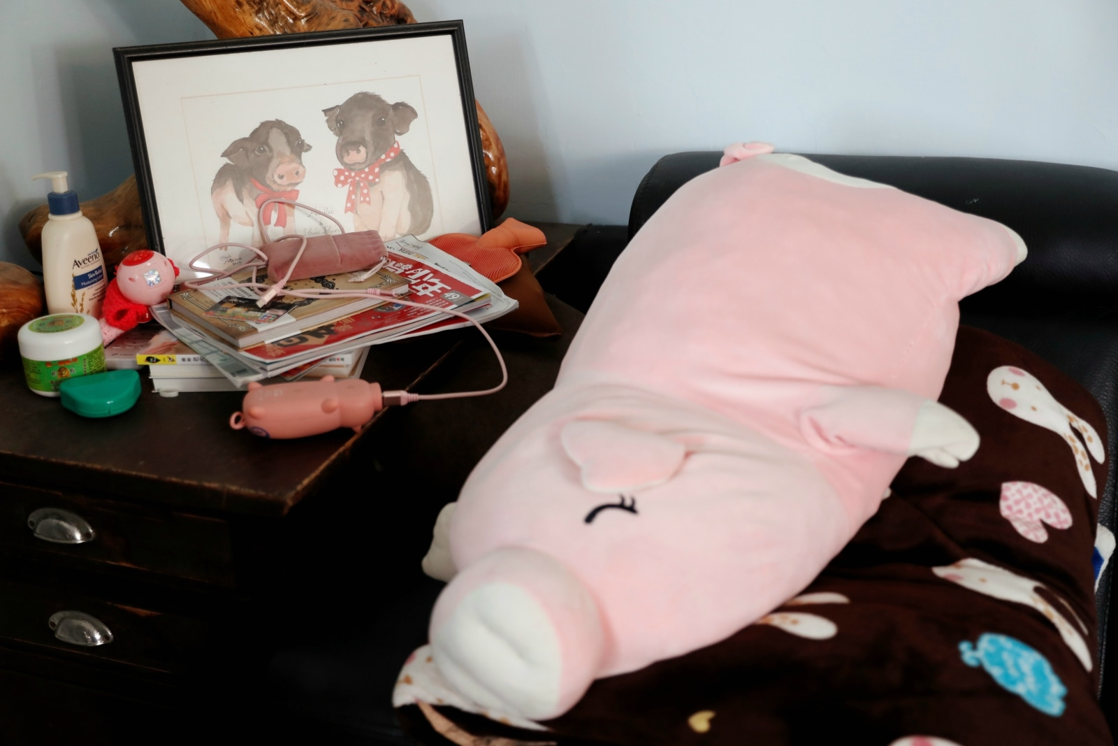 Pig shaped cushion and power bank are seen at Anita Chen's house, in Taipei, Taiwan January 28, 2019. REUTERS/Tyrone Siu