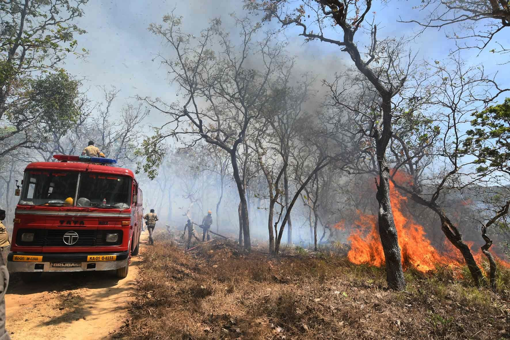 Foresters, along with hundreds of volunteers, made a vain bid to douse the fire that had spread to dangerous proportions, the officials said. (Photo: IANS)