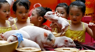 Chinese Lunar New Year marked with celebration, ceremony