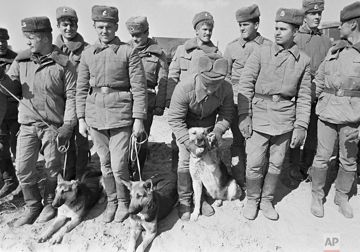 Soviet Army soldiers with their war-dogs line up after their unit crossed a bridge on the border between Afghanistan and then Soviet Uzbekistan near the Uzbek town of Termez, Uzbekistan.  When the Soviet Union completed its troops' withdrawal from Afghanistan on February 15, 1989, it was widely hailed as a much-anticipated end to a bloody quagmire, but public perceptions have changed and many Russians now see the 10-year Soviet war in Afghanistan as a necessary and largely successful endeavour. (AP Photo/Alexander Zemlianichenko)