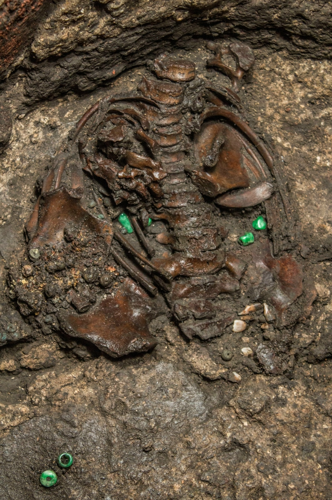 The 500-year-old interior of a circular stone offering shows the bones of a sacrificed young boy dressed as a warrior and dedicated to the Aztec war god Huitzilopochtli, in Mexico City, Mexico in this handout photograph released March 15, 2019 to Reuters by Courtesy of the Templo Mayor Project of the National Institute of Anthropology and History (INAH)/Mirsa Islas/Handout via REUTERS