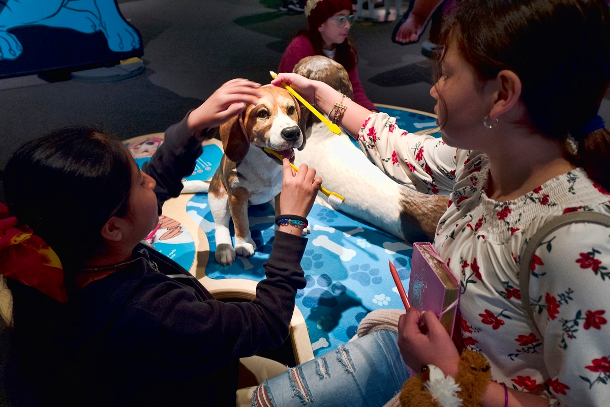 Students from the Theodore T Alexander Science Center School practice brushing dog's teeth at an interactive display. (AP Photo/Richard Vogel)