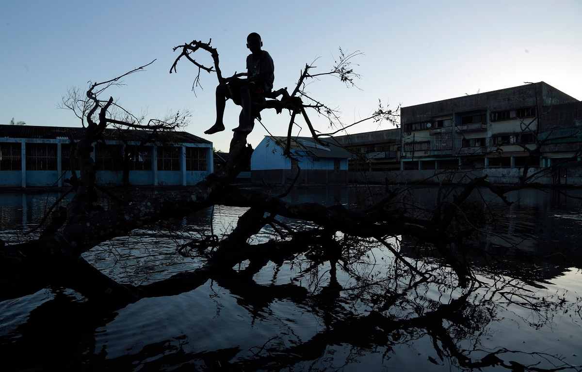 A young boy sits on a fallen tree outside a school in Beira, Mozambique. (AP Photo/Themba Hadebe, File)