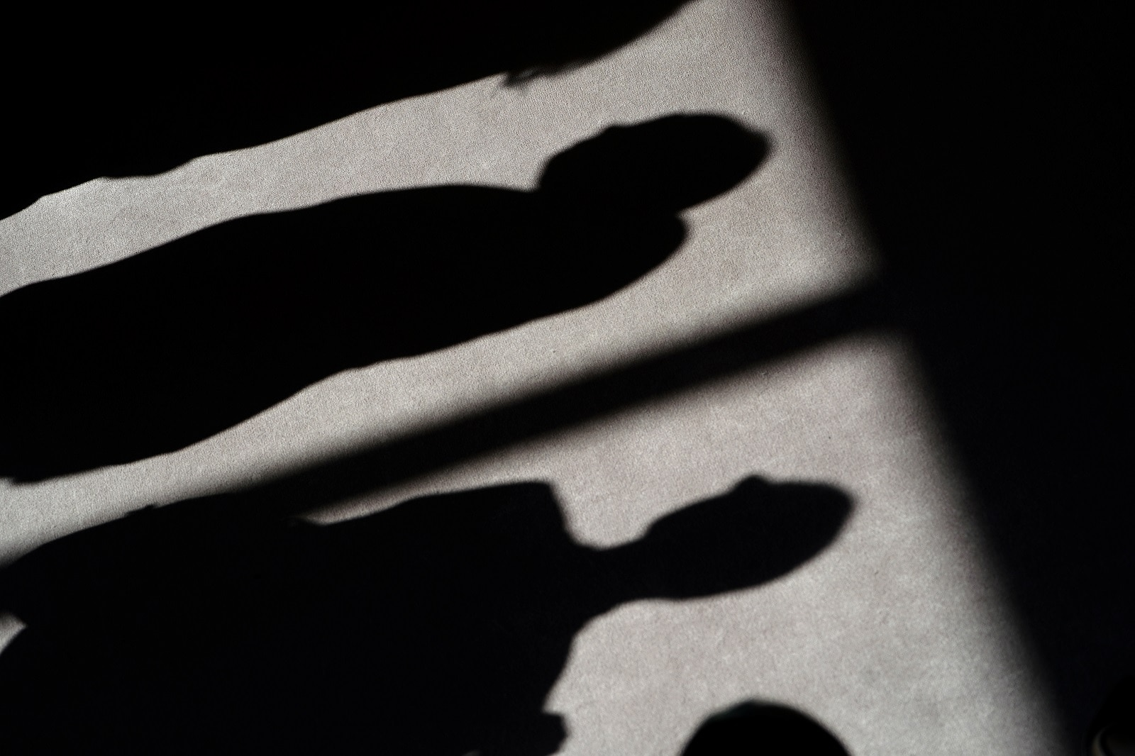 Shadows of people are cast on the carpet of the United Nations Security Council before a meeting about sexual violence in conflict in New York, New York, US, April 23, 2019. REUTERS/Carlo Allegri