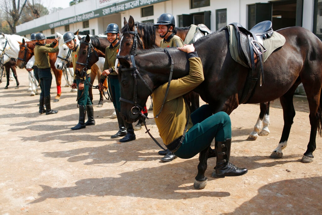 In this March 19, 2019, photo, a Nepalese army soldier plays with his horse as others watch before leaving for rehearsals for Ghode Jatra festival in Kathmandu, Nepal. (AP Photo/Niranjan Shrestha)
