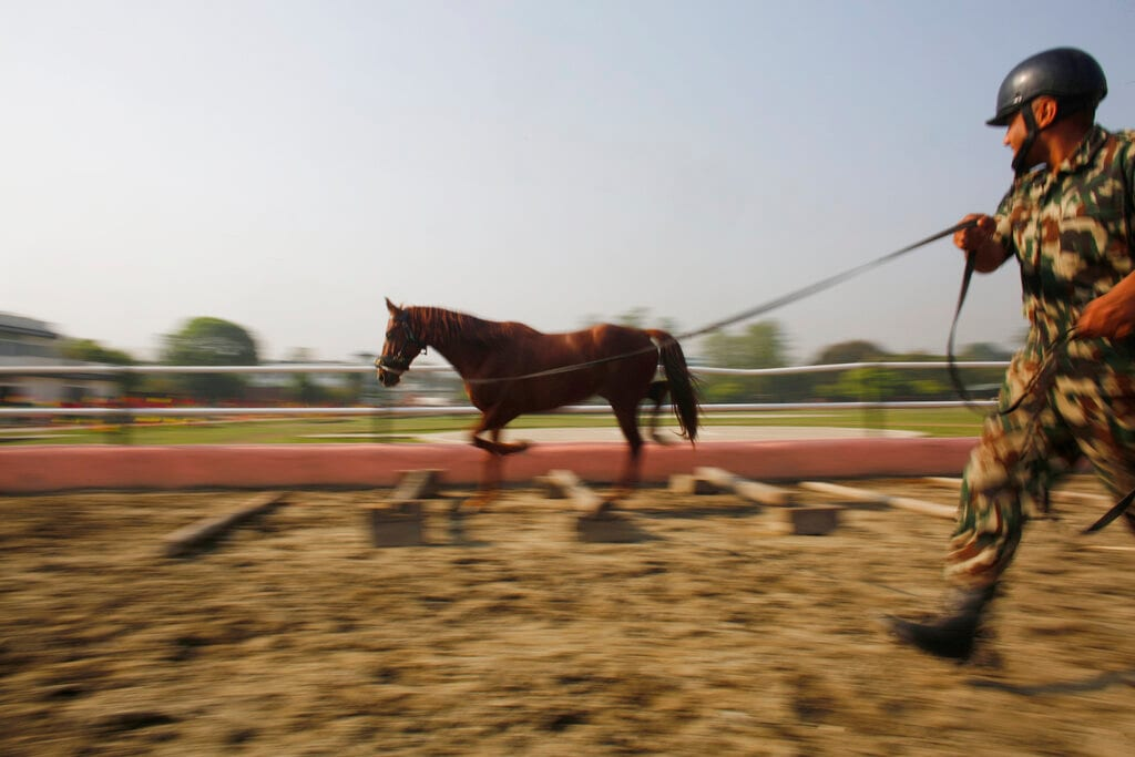 In this April 3, 2019, photo, a Nepalese army soldier trains his horse for Ghode Jatra festival in Kathmandu, Nepal. (AP Photo/Niranjan Shrestha)