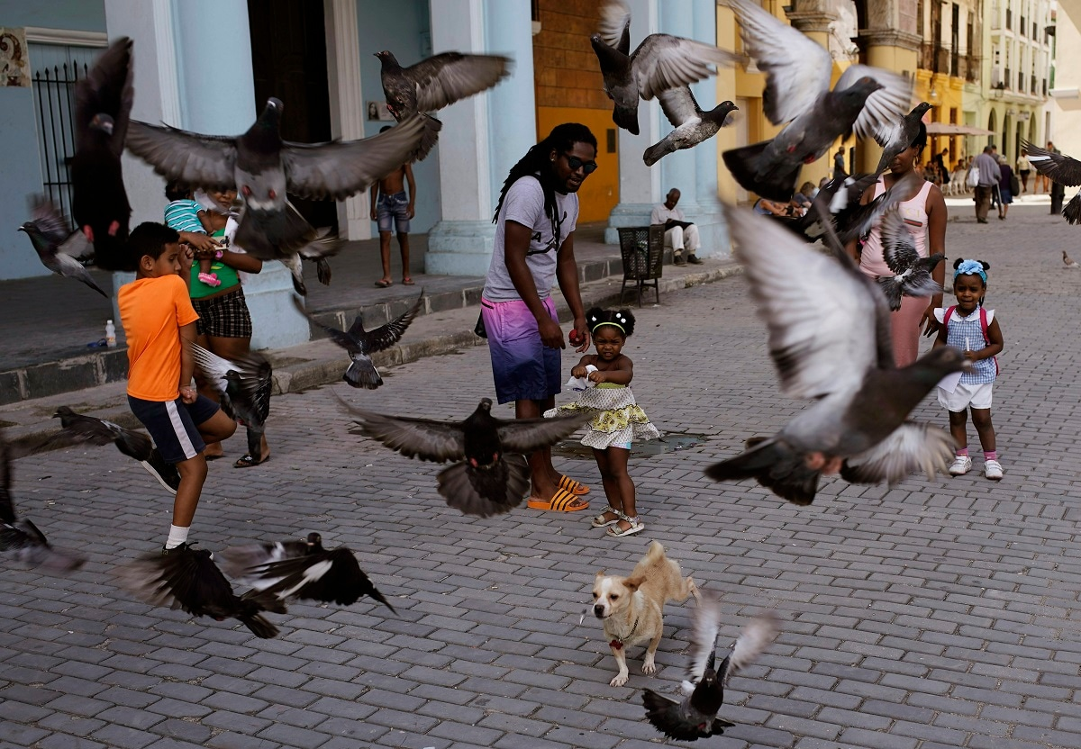 A girl and her father feed the pigeons as their dog runs amid the birds at a public square in Havana, Cuba. Communist Party leader Raúl Castro warned Cubans on Wednesday that they should brace for worsening shortages due to Trump administration policies, but said the island won't return to the extreme deprivation of the post-Soviet period. (AP Photo/Ramon Espinosa)