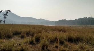 Hope and despair in the remnants of Dandakaranaya