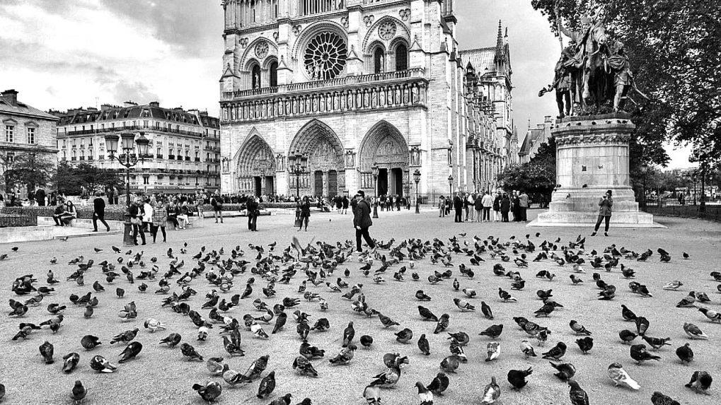 A walk down Notre-Dame's memory lane