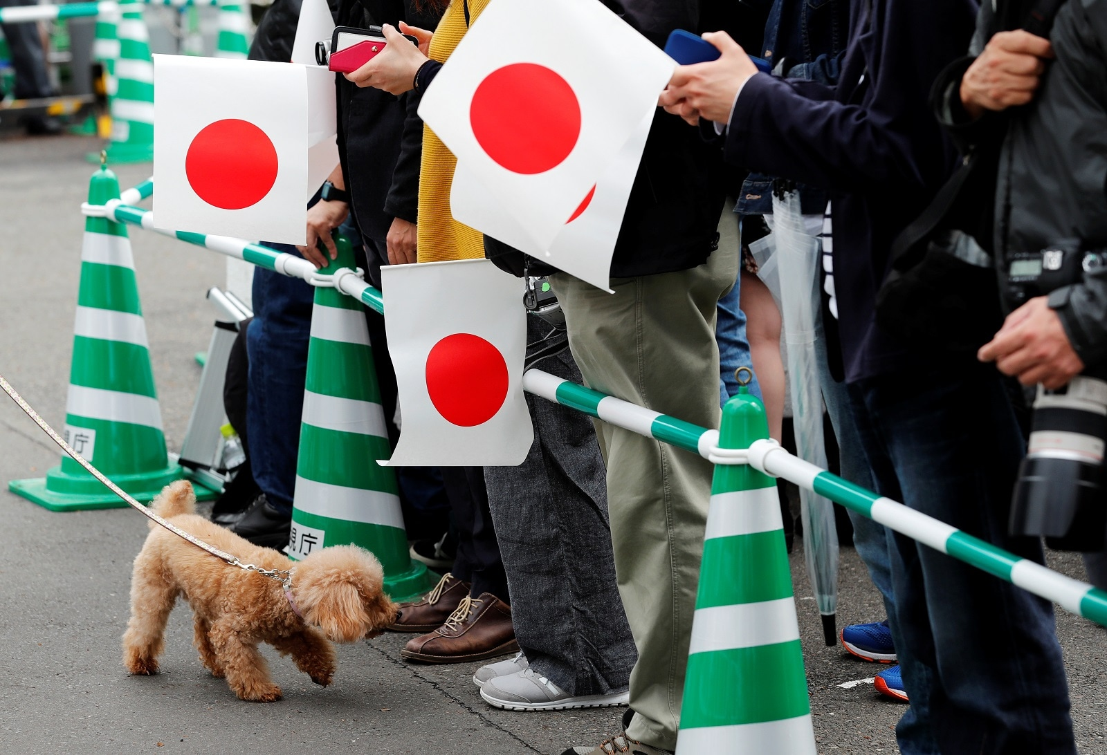 A dog walks past people waiting for the arrival of Japan's new Emperor Naruhito to the Imperial Palace in Tokyo, Japan May 1, 2019. REUTERS/Kim Kyung-Hoon