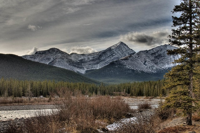 Bragg Creek, Canada | Surge in booking - 382 percent: If you are a fan of trekking and camping, then this town situated near Calgary is one of the best destinations for you to spend a couple of days in the forests.