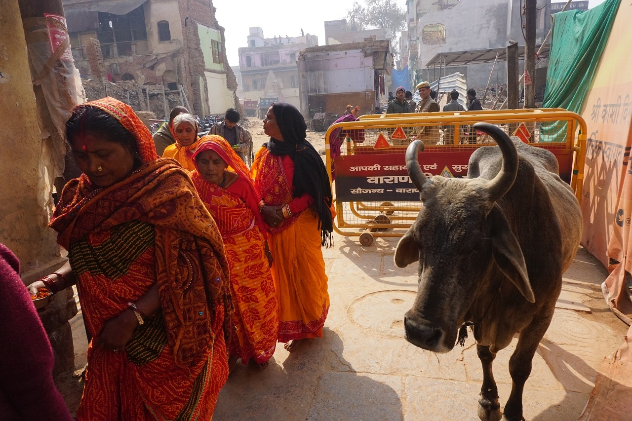 Pilgrims on way to the Kashi Vishwanath Temple, Varanasi in Uttar Pradesh.