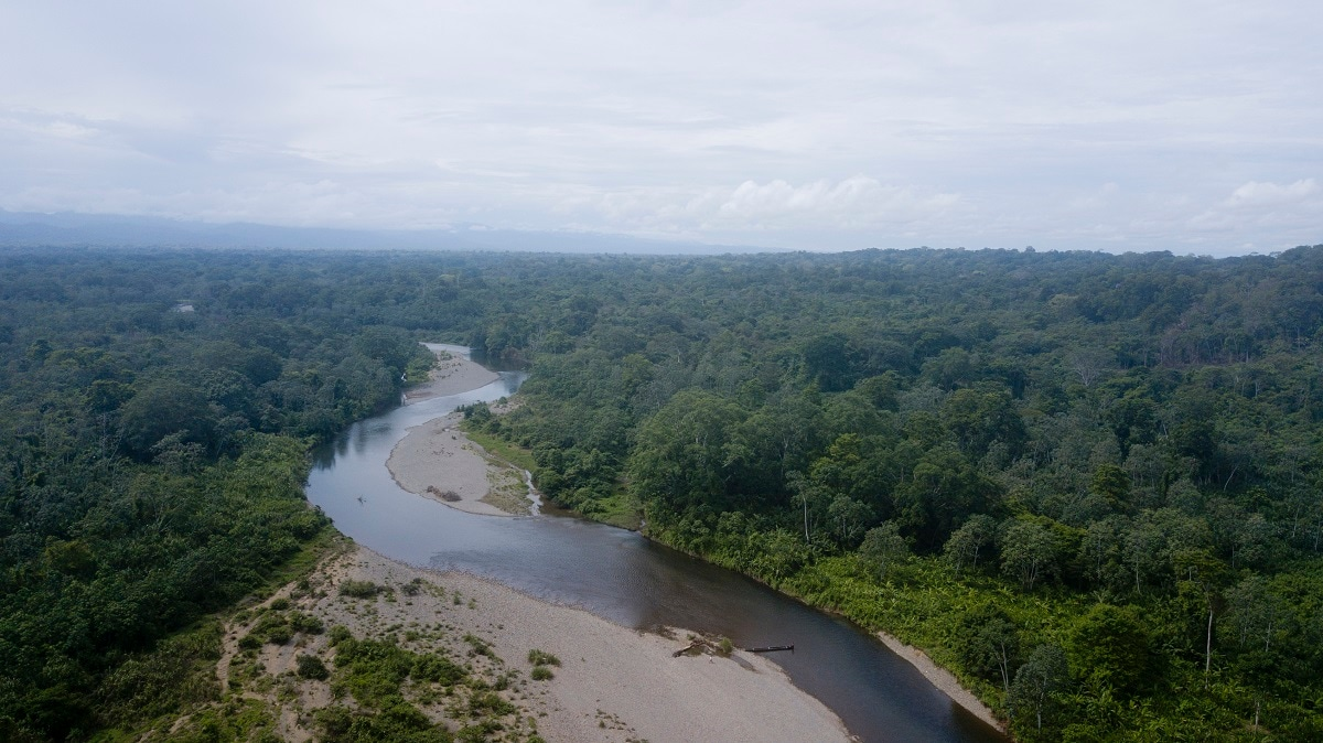 The photo shows an aerial view of the Tuquesa river as it winds down into the jungle from Bajo Chiquito, Darien province, Panama. Migrants travel by boat or follow on foot along the shore of the river to their next stop on their way north. (AP Photo/Arnulfo Franco)