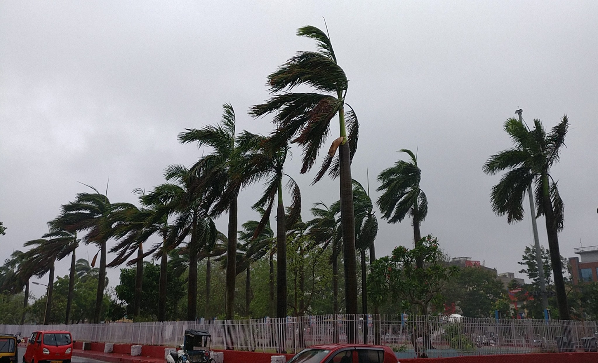 Trees bend with gusty winds ahead of the landfall of cyclone Fani, in Bhubaneswar, Friday, May 3, 2019. (PTI Photo)