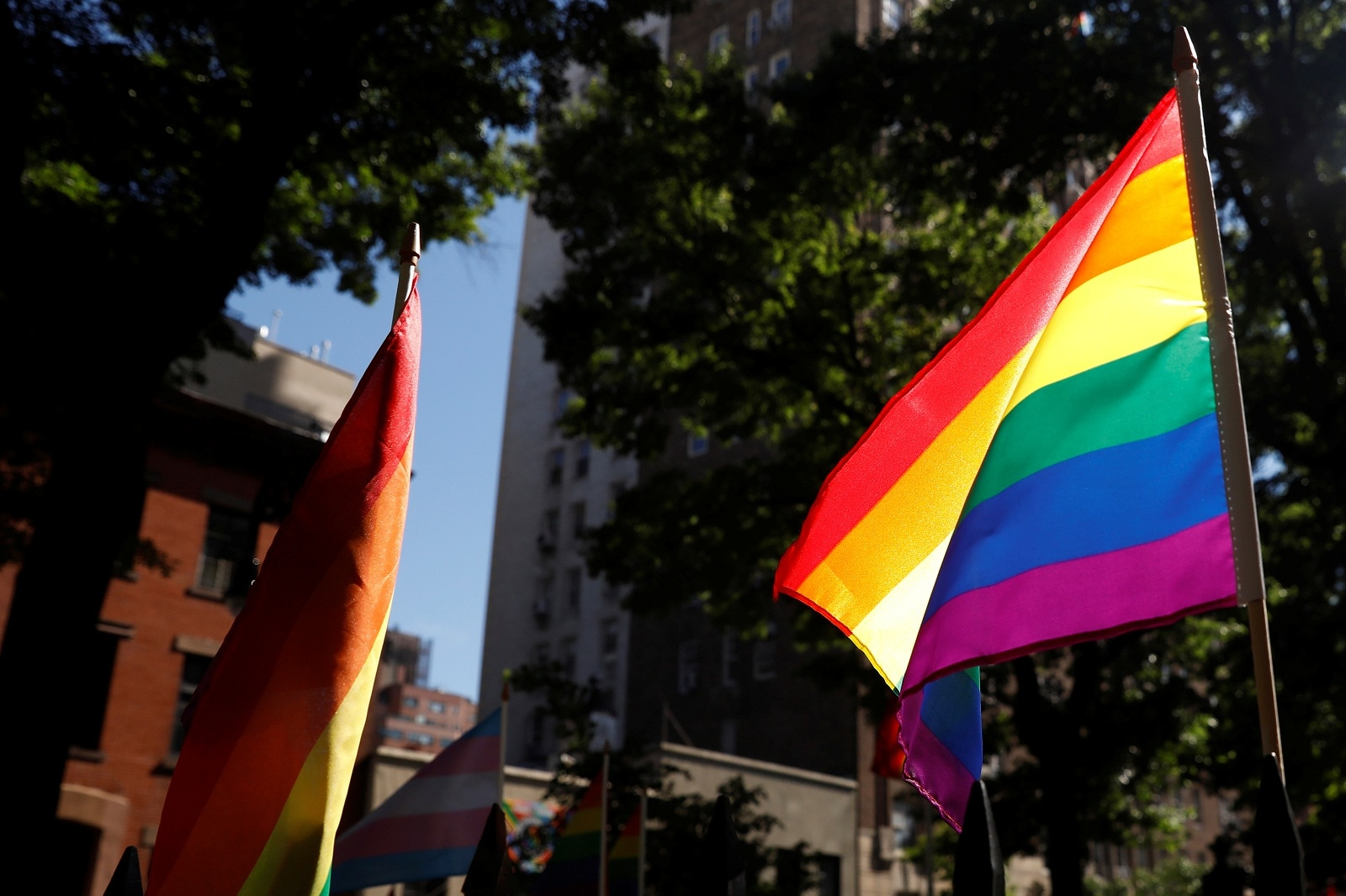 A rainbow flag, commonly known as the gay pride flag or LGBT pride flag, blows in the wind inside Christopher Park outside the Stonewall Inn in New York, US, June 27, 2019. REUTERS/Shannon Stapleton