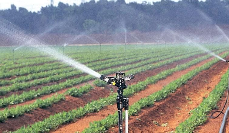 Jain Irrigation's share price fell 4.73 percent to its 52-week high of Rs 9.05. (Company Image)