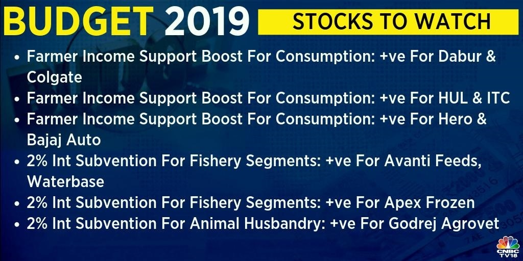 The government has said that the Union Budget 2019-2020 will carry a proposal to expand farm income support under the PM Kisan scheme. This could help consumption and auto stocks such as Dabur India, Colgate-Palmolive, Hindustan Unilever, ITC, Bajaj Auto and Hero MotoCorp.