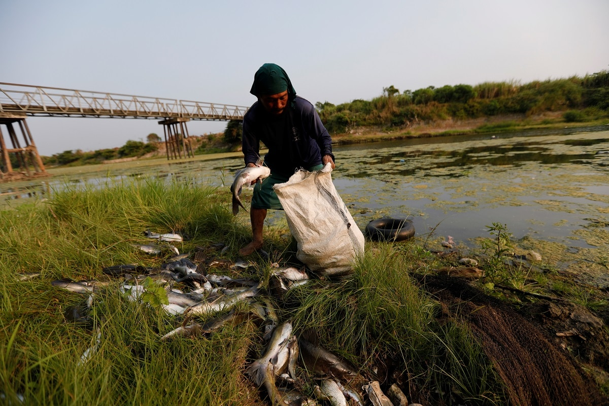 A fisherman collects fish caught from Brantas river in Mojokerto, East Java province, Indonesia. REUTERS/Willy Kurniawan