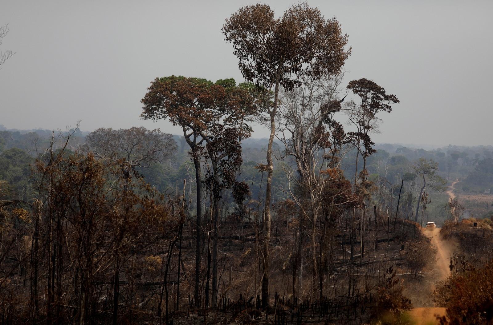 A car drives past a burning tract of Amazon jungle in Porto Velho, Brazil August 25, 2019. REUTERS/Ricardo Moraes