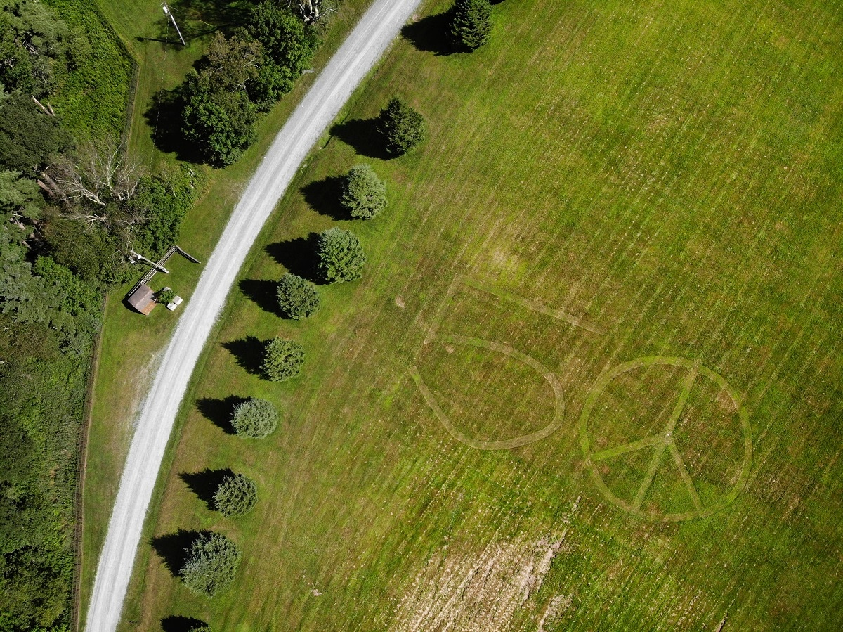 Photo shows the number 50 and a peace sign mowed into the grass at the site of the 1969 Woodstock Music and Arts Fair in Bethel. (AP Photo/Seth Wenig)