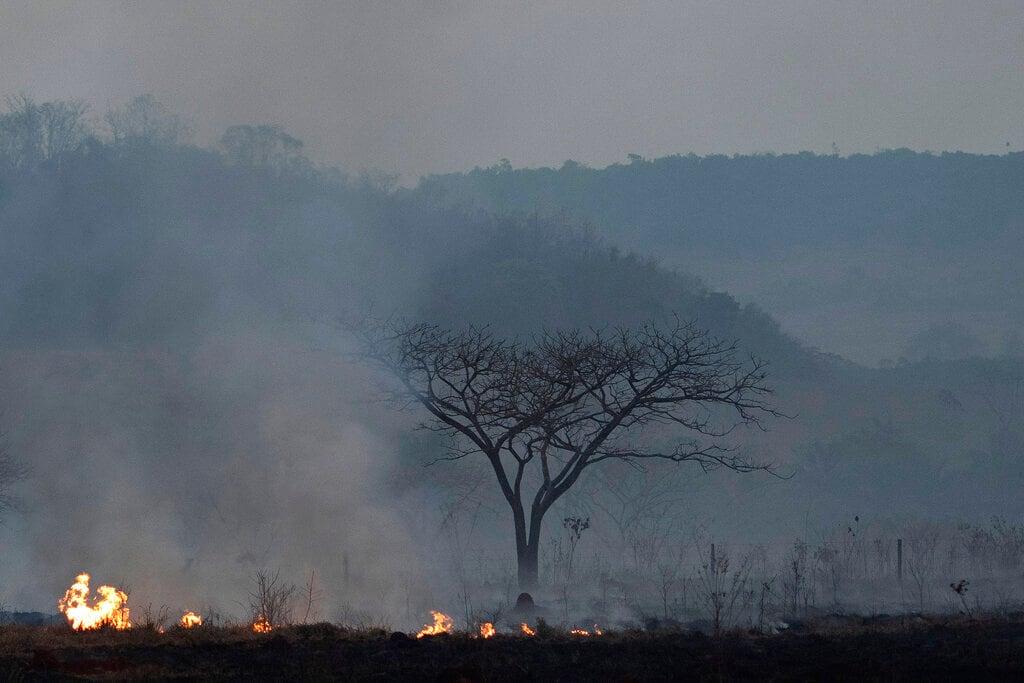 Fire consumes a field alongside the BR 163 highway in Nova Santa Helena municipality, Mato Grosso State, Brazil, Friday, Aug. 23, 2019. (AP Photo/Leo Correa)