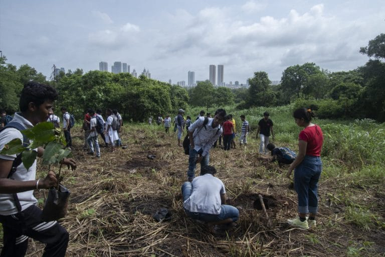 29 protesters arrested as tree cutting starts in Aarey Colony