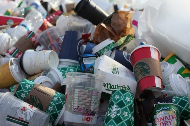 As India stares at single-use plastic ban, country's per capita consumption far behind world average