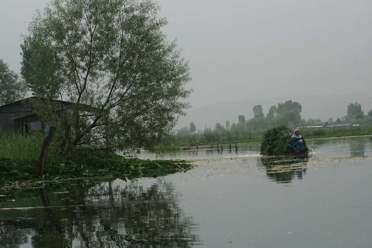An elderly Kashmiri woman on Dal Lake, Srinagar.