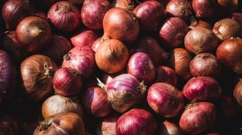 Onion price breaches Rs 200 a kg in Bengaluru market