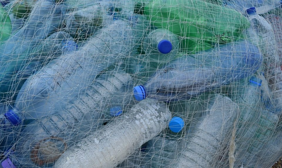 Getting rid of single-use plastic: 10 lessons from the world