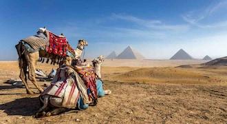 Rank 59 | Egypt (Image: Reuters)