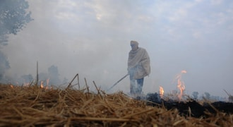 India, Sweden launch pilot project to tackle stubble burning