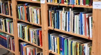 Judging a book by its title: Some literary manoeuvres to catch the reader's eye
