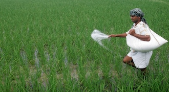 Fertiliser stocks under selling pressure as natural gas price hike may weigh on margin