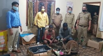 Assam Forest Department foils attempt to smuggle out exotic animals; Kangaroo and Aldabra Tortoises seized